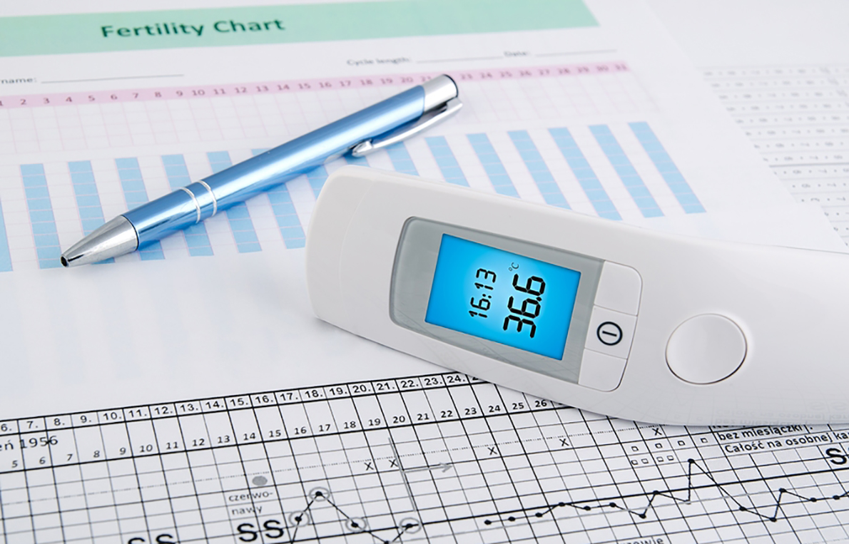 digital thermometer and fertility chart